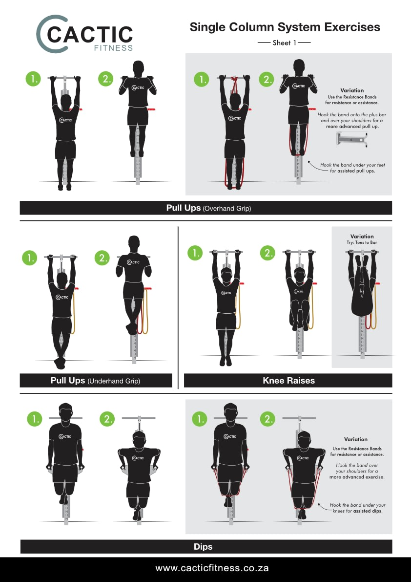 Cactic Fitness Single Column System Exercises 1