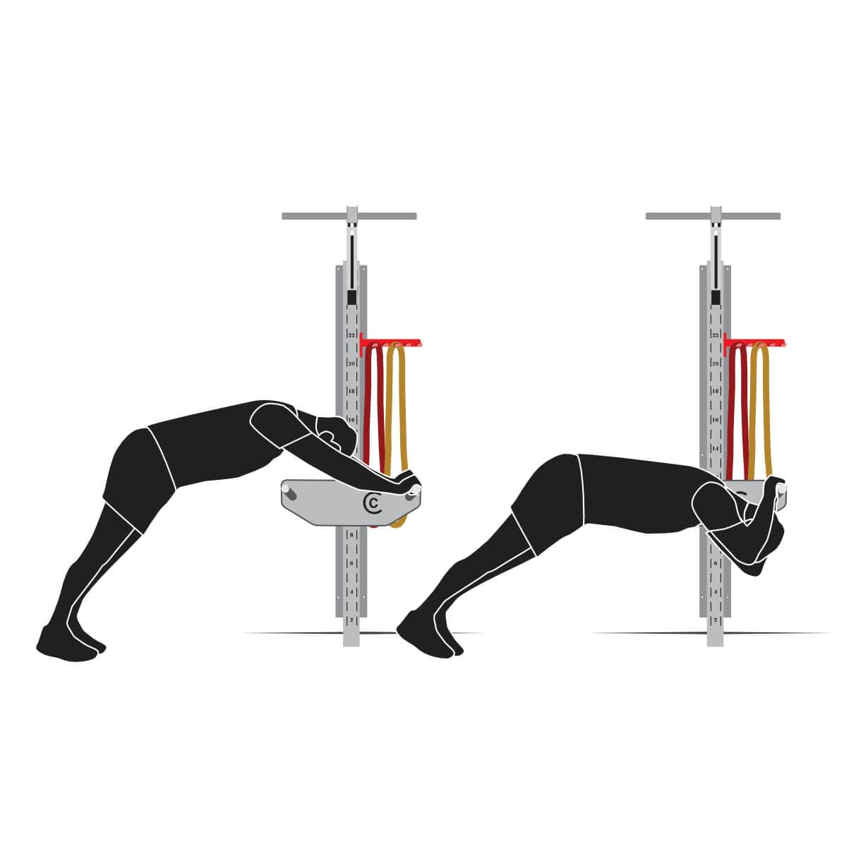 Bodyweight Tricep Extension