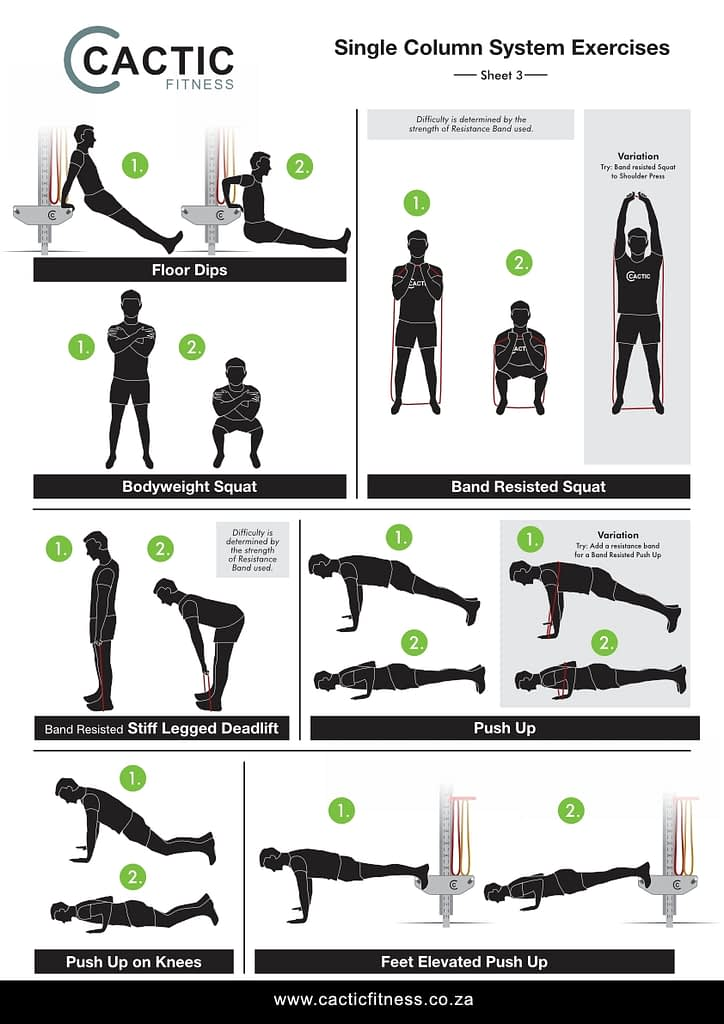 Cactic Fitness Single Column System Exercises 3